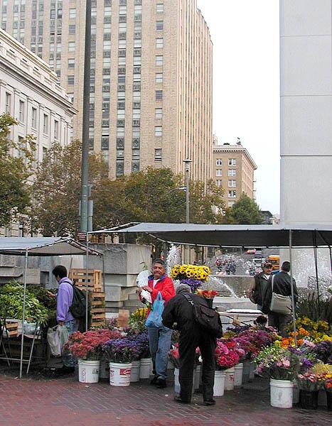 Farmers market opens