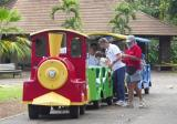 The Zoo train