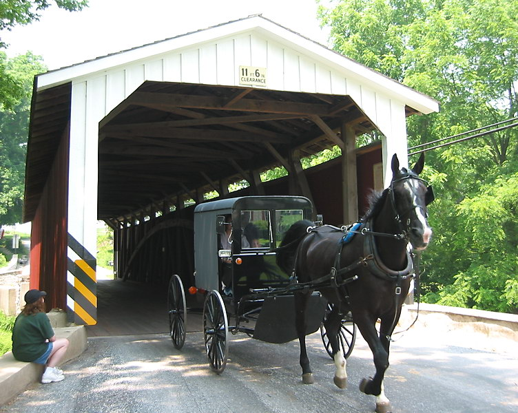 Covered Bridge  Amish Buggy