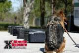 National EOD K-9 Workshop @ HCSO  Training Facility