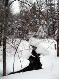 Winter's Stream