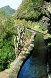 Voyage à Madère en mars 2003 - Madeira island trip