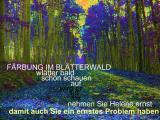 Helenes gefärbter Blätterwald