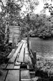 Boardwalk to River Latrine