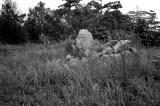 Granite Blocks in the Field