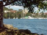 Boats moored in North Harbour