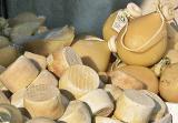 Cheese at the Market of Acciaroli