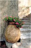 Pot and steps
