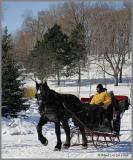 Fêtes des neiges de Montréal 2005 / Snow Feast