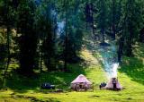 Meadow in Kalasi 2