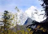 Snowy Mount (Siguliangshan)in Sichuan 5