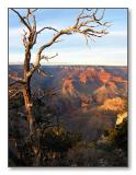 Grand Canyon SunsetArizona