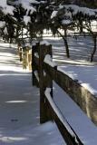 Jan. 23, 2005 - Fence line