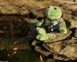 F.Stop  And Froggie Pond.jpg
