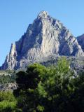 2005 Costa Blanca puig campagno