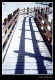 Snow & the Light