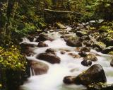 Spetch Creek, B.C. near Whistler