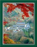 Baegyangsa Buddhist Temple 백양사 - Korea