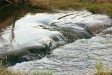 Creek_CRW_1258b.jpg
