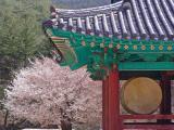 Naeso Temple