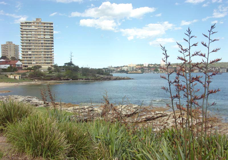 Towards Manly