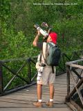 SUBIC BAY: I was shooting a Philippine Woodpecker at Triboa Bay Mangrove Park with the hand held 300D + 100-400 L IS + DG Super + Better Beamer,  while my 20D + 400 5.6L hangs ready in case some flying raptors come into view.