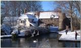 Pulls Ferry in the Winter