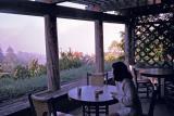 misty morning coffee at ventana