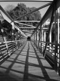 Spider-web bridge