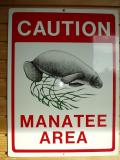 Watch out for manatees.