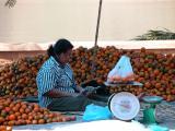 Tangerine Market