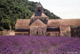 Provence, France 2001