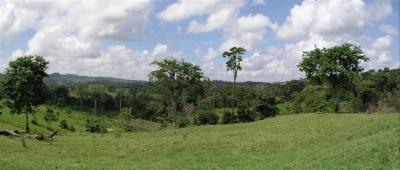 Paisaje del Norte del Edo. Yaracuy