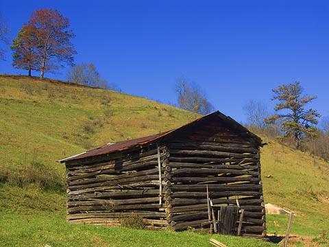 Old Burley Tobacco Barn 6720