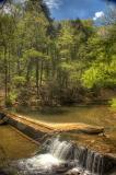 bowman's hill wildflower preserve: millrace pond
