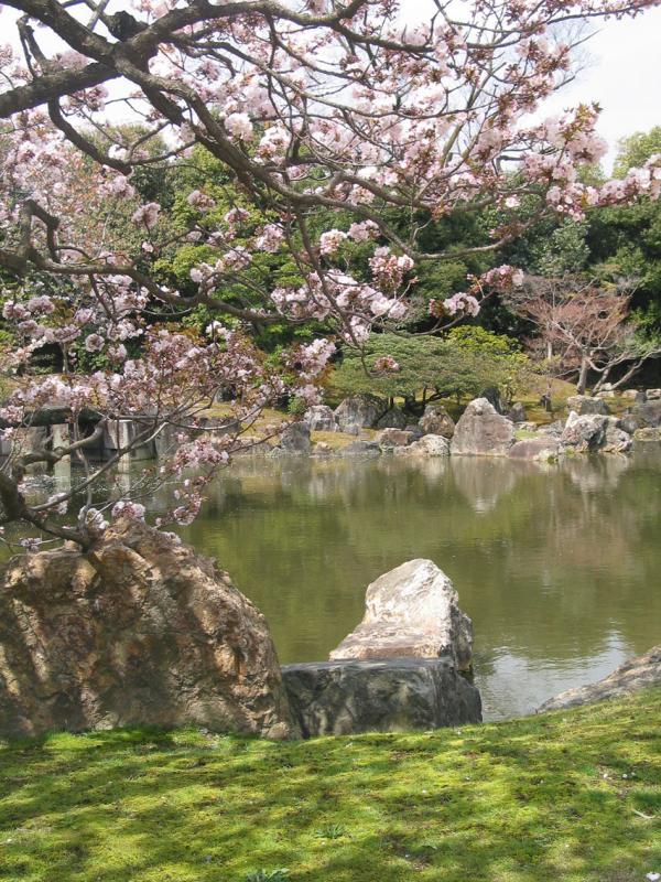Pond at Nijojo