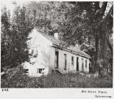 Tallahassee and Live Oak Plantation
