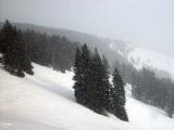 Snow on Slopes 121102 DSC07364.jpg