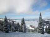 Snow Flocked Trees and Ski Run DSC07478 Resized.jpg