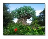 The Tree of LifeAnimal Kingdom