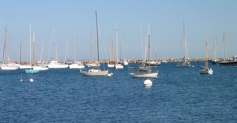 Vineyard Haven Sailboats