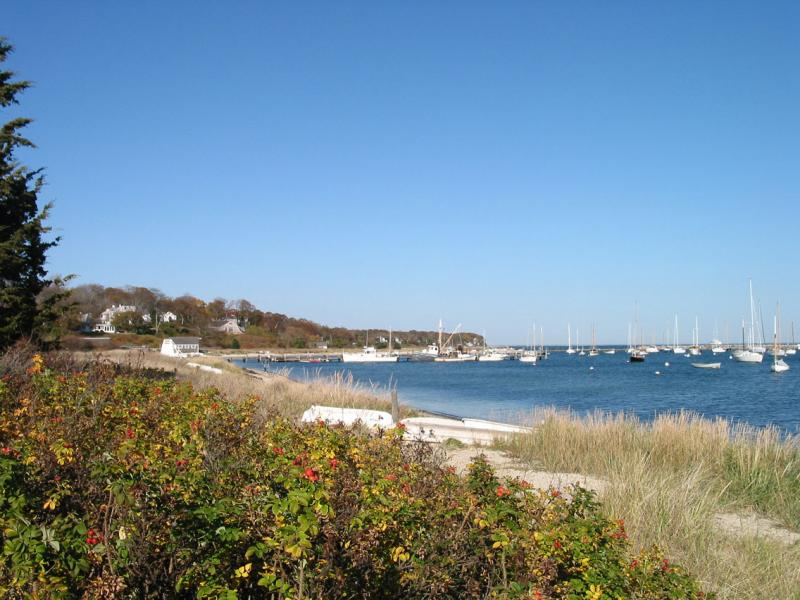 Vineyard Haven beach