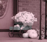 neighbors porch infrared