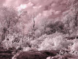 falls of the ohio infrared