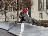 LEO Memorial ~ Washington