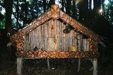 A Maori storage hut