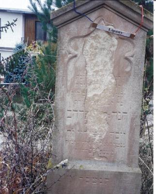 Chana daughter of Avraham Josef-#139