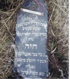 Chaje daughter of Zvi GOTTLEIB wife of R' Yehoshua Frankel?