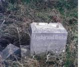 LLonka FISCHGRUND (possibly, Leni Low Fischgrund born about 1845)
