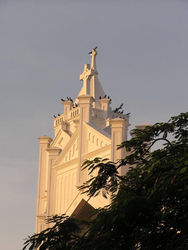 Birds on Church on Duvall St.JPG